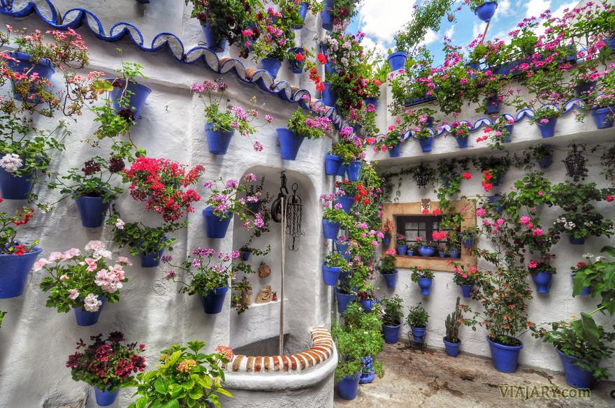 Patios de c rdoba fotos - Imagenes de patios andaluces ...